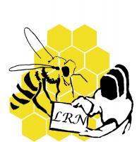 Logo2 lrn v4 2